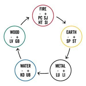 5 elements Chinese medicine